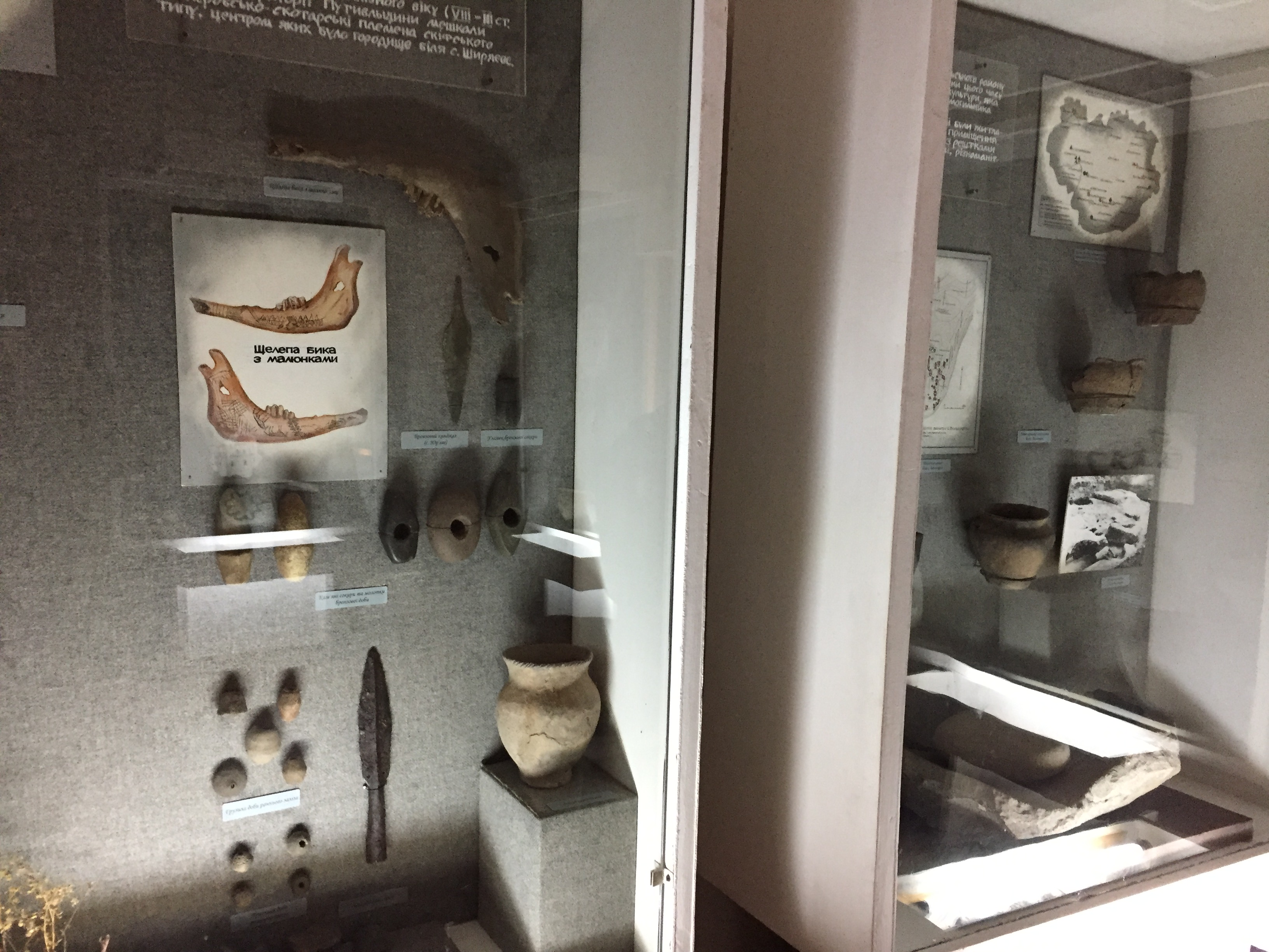 考古学的な展示物