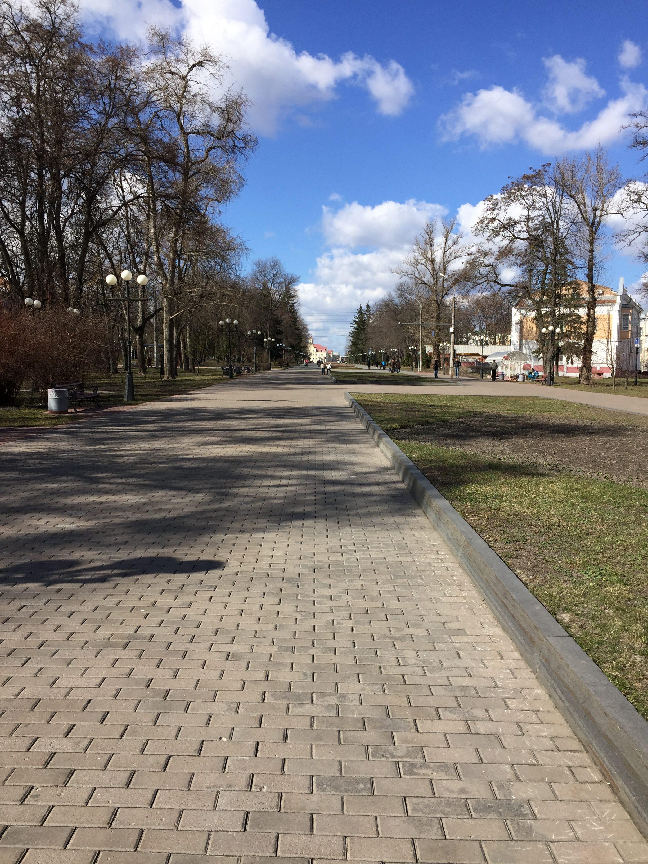 公園近くの大通り