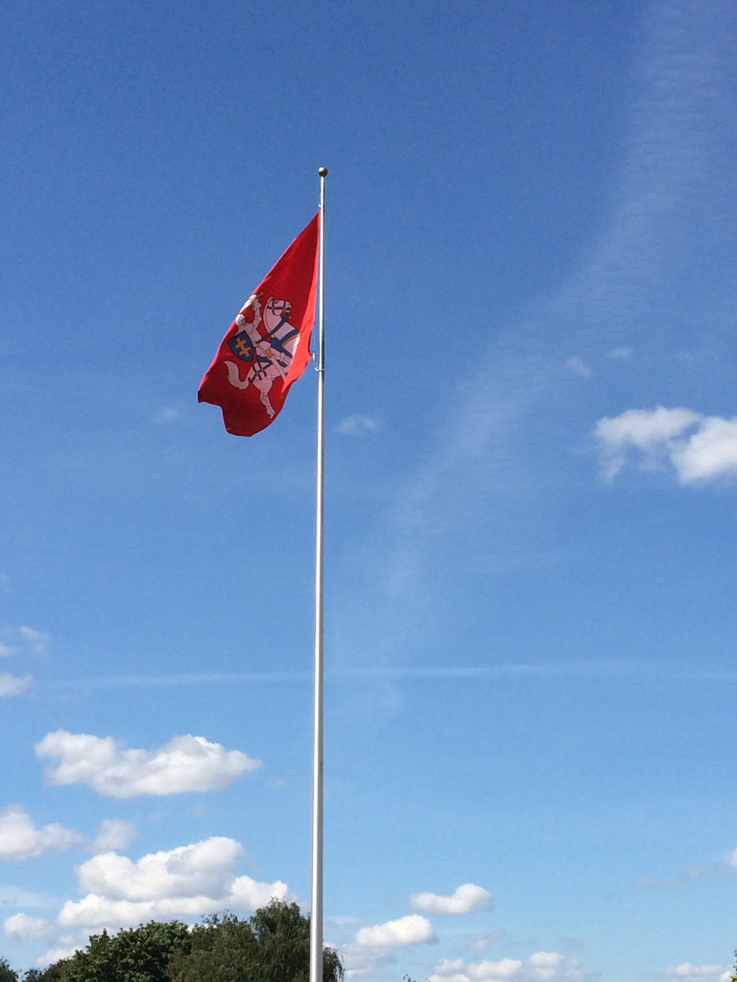 リトアニアの国章旗